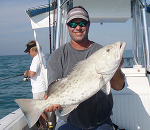 Bahamas Gag Grouper