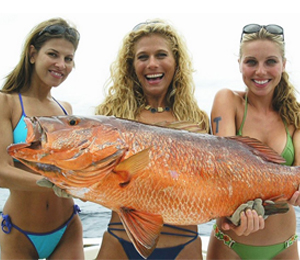 The Bahamas Red Snapper